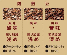 DAINICHI MR-120 生豆烘焙機