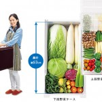 新上市 SHARP大冷凍室冰箱 SJ-GT50BT